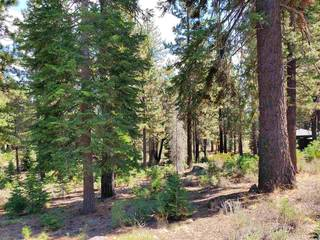 Listing Image 3 for 11101 China Camp Road, Truckee, CA 96161-0000