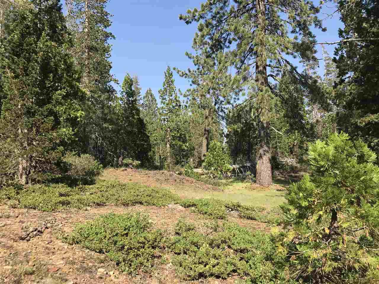 Image for 000 Cisco Road, Emigrant Gap, CA 95715