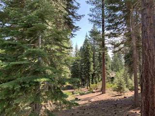 Listing Image 10 for 8710 Lahontan Drive, Truckee, CA 96161