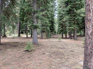 Listing Image 11 for 11242 China Camp Road, Truckee, CA 96161