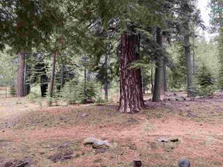 Listing Image 7 for 11242 China Camp Road, Truckee, CA 96161