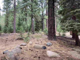 Listing Image 8 for 11242 China Camp Road, Truckee, CA 96161