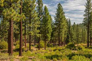 Listing Image 4 for 2413 Newhall Court, Truckee, CA 96161