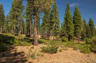 Listing Image 5 for 2413 Newhall Court, Truckee, CA 96161