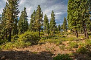 Listing Image 8 for 2413 Newhall Court, Truckee, CA 96161