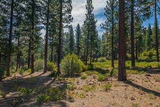 Listing Image 9 for 2413 Newhall Court, Truckee, CA 96161