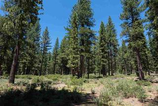 Listing Image 10 for 11610 Bottcher Loop, Truckee, CA 96161