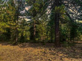 Listing Image 4 for 9090 Horned Lark Court, Truckee, CA 96161