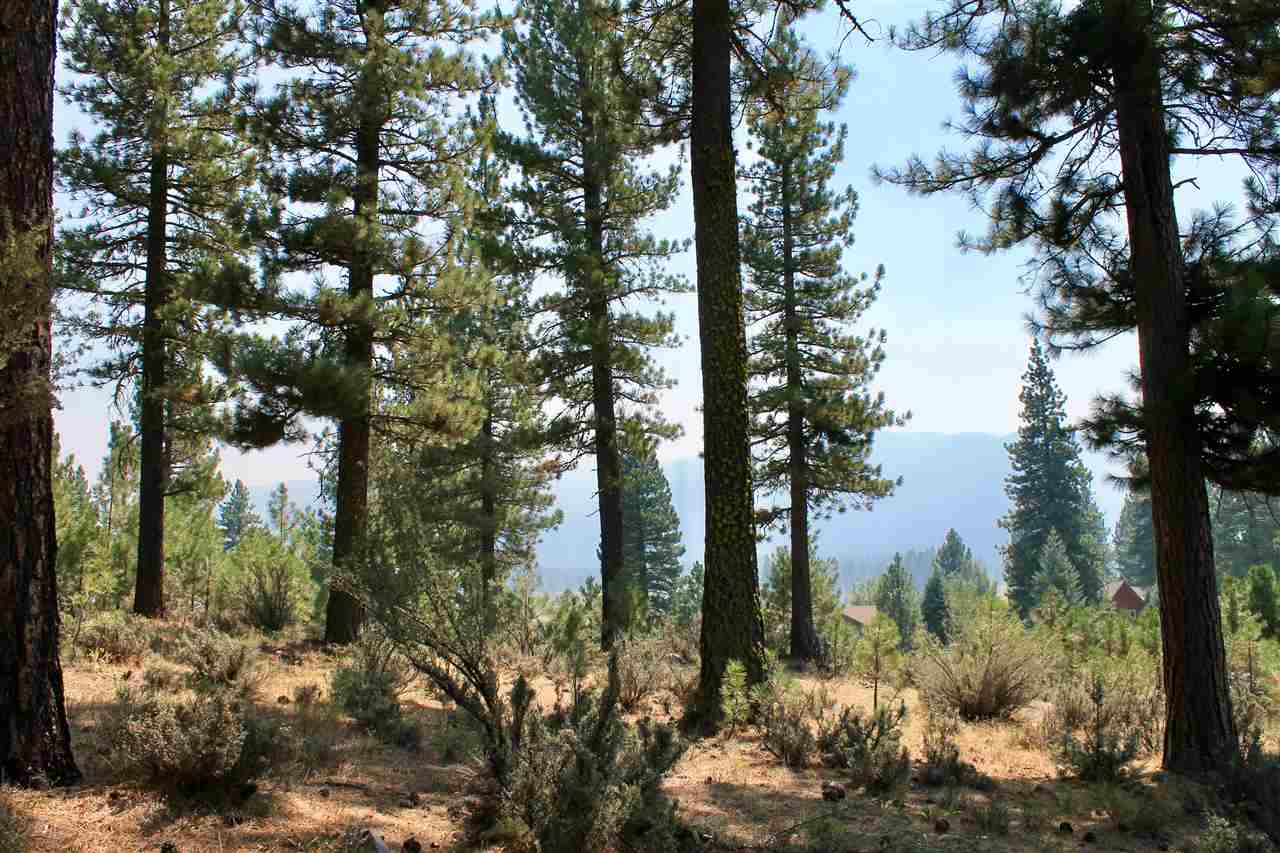 Image for 738 Valley Ranch Drive, Clio, CA 96106