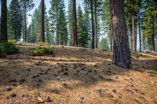 Listing Image 4 for 7100 Villandry Circle, Truckee, CA 96161