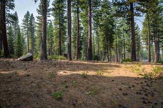 Listing Image 5 for 7100 Villandry Circle, Truckee, CA 96161