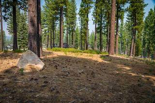 Listing Image 7 for 7100 Villandry Circle, Truckee, CA 96161