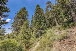 Listing Image 21 for 1880 Apache Court, Olympic Valley, CA 96146