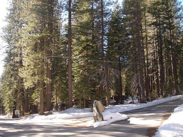 Image for 50946 White Fir Terrace, Soda Springs, CA 95728