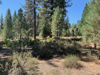 Listing Image 9 for 510 John Moody, Truckee, CA 96161