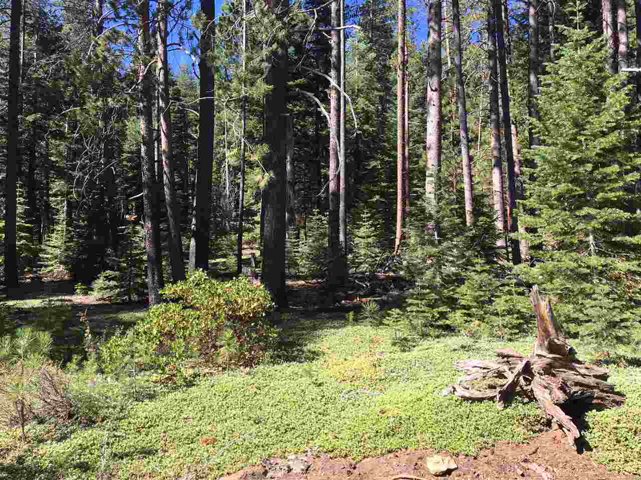 Image for 10986 Laurelwood Drive, Truckee, CA 96161