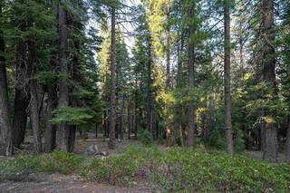 Listing Image 16 for 10986 Laurelwood Drive, Truckee, CA 96161