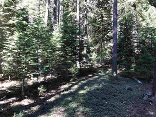 Listing Image 18 for 10986 Laurelwood Drive, Truckee, CA 96161