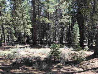 Listing Image 20 for 10986 Laurelwood Drive, Truckee, CA 96161