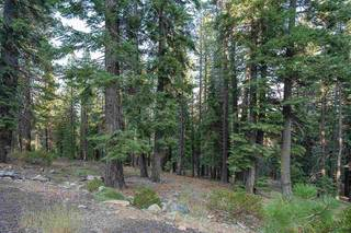 Listing Image 7 for 10986 Laurelwood Drive, Truckee, CA 96161