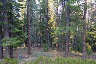 Listing Image 10 for 10986 Laurelwood Drive, Truckee, CA 96161
