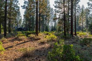 Listing Image 13 for Corner lot 390 Schroeder Way, Truckee, CA 96161