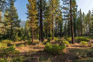 Listing Image 4 for Corner lot 390 Schroeder Way, Truckee, CA 96161