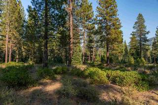 Listing Image 5 for Corner lot 390 Schroeder Way, Truckee, CA 96161