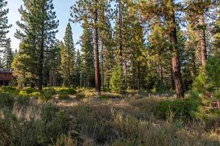 Listing Image 6 for Corner lot 390 Schroeder Way, Truckee, CA 96161