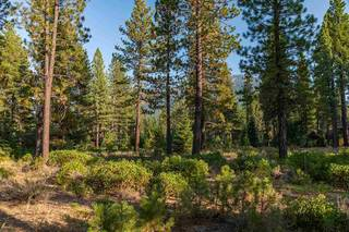Listing Image 7 for Corner lot 390 Schroeder Way, Truckee, CA 96161