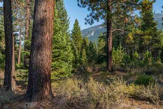 Listing Image 9 for Corner lot 390 Schroeder Way, Truckee, CA 96161