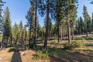 Listing Image 2 for 7103 Villandry Circle, Truckee, CA 96161