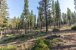 Listing Image 3 for 7103 Villandry Circle, Truckee, CA 96161