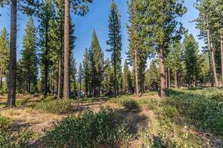Listing Image 4 for 7103 Villandry Circle, Truckee, CA 96161