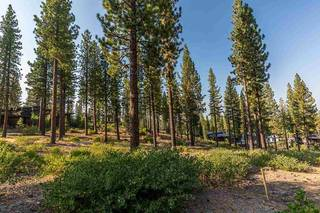 Listing Image 5 for 7103 Villandry Circle, Truckee, CA 96161