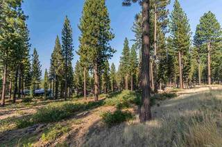 Listing Image 7 for 7103 Villandry Circle, Truckee, CA 96161