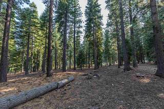 Listing Image 11 for 8595 Kilbarchan Court, Truckee, CA 96161