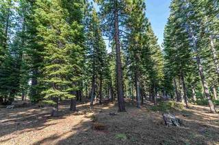Listing Image 8 for 8595 Kilbarchan Court, Truckee, CA 96161