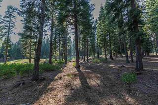 Listing Image 9 for 8595 Kilbarchan Court, Truckee, CA 96161