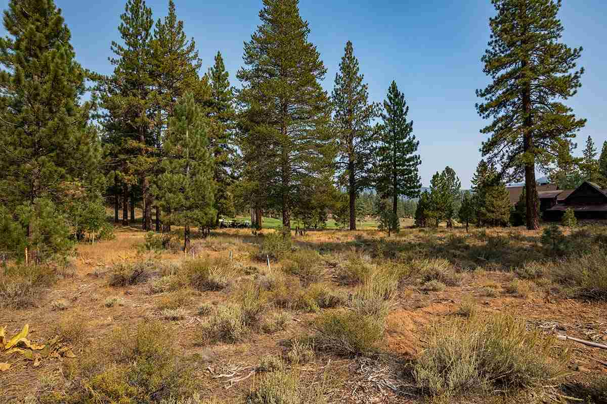 Image for 10203 Dick Barter, Truckee, CA 96161