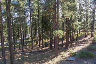 Listing Image 12 for 11728 China Camp Road, Truckee, CA 96161