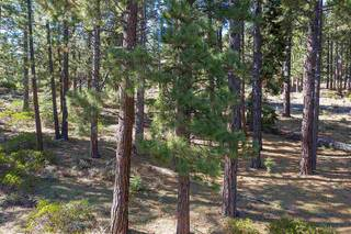 Listing Image 14 for 11728 China Camp Road, Truckee, CA 96161