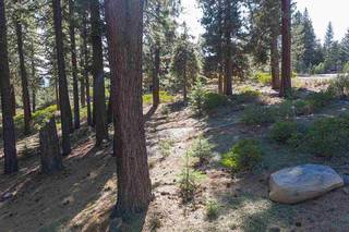 Listing Image 15 for 11728 China Camp Road, Truckee, CA 96161