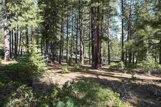 Listing Image 3 for 11728 China Camp Road, Truckee, CA 96161