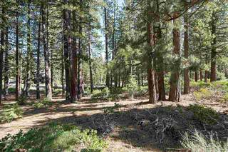Listing Image 6 for 11728 China Camp Road, Truckee, CA 96161