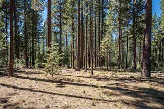 Listing Image 16 for 0000 Rue Ivy, Truckee, CA 96161