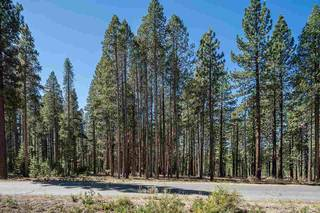 Listing Image 14 for 0000 Rue Ivy, Truckee, CA 96161