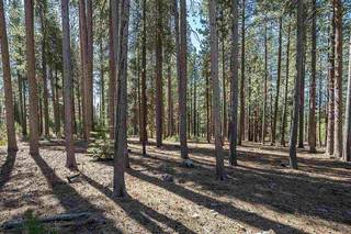 Listing Image 17 for 0000 Rue Ivy, Truckee, CA 96161
