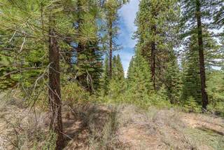 Listing Image 14 for 10336 Palisades Drive, Truckee, CA 96161