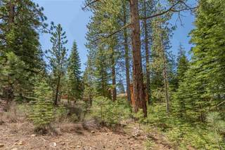 Listing Image 17 for 10336 Palisades Drive, Truckee, CA 96161